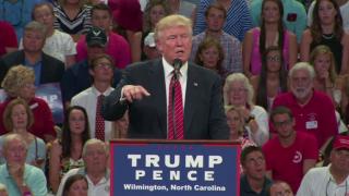 Dissecting Donald Trump's 2nd Amendment Comment