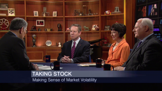 Analyzing the Impact of the Stock Market's Volatility