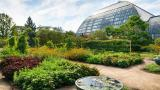 """Garfield Pak Conservatory's greenhouse and outdoor gardens are described as """"serene and enveloping."""" (Garfield Park Conservatory / Facebook)"""
