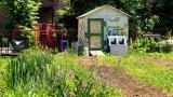 Eco House's Englewood farm site. (Patty Wetli / WTTW News)