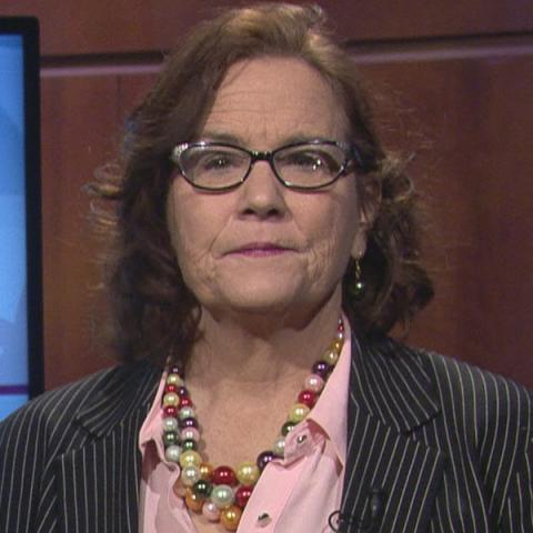 Susan Sadlowski Garza - Chicago Alderman Candidate