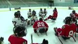 May 8, 2013 - Sled Hockey