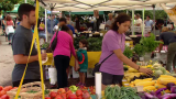 Growing a Movement: Green City Market's Impact on Chicago