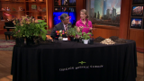 May 21, 2014-Gardening Tips from Eliza Fournier
