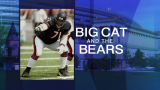 Bears Beat Chargers 22-19