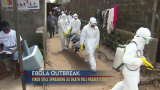 Researchers: Greater Precautions Needed to Stop Ebola
