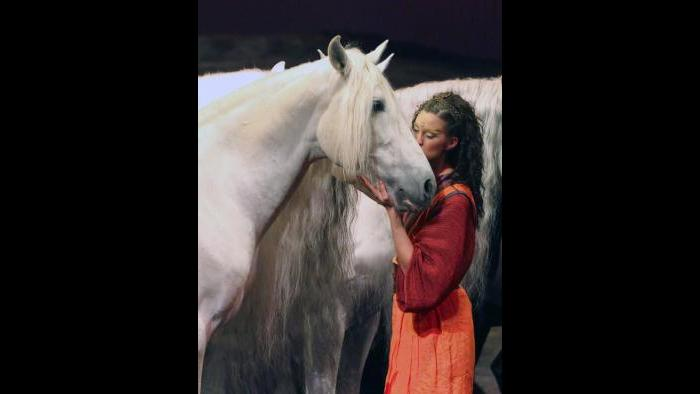 (Courtesy of Cavalia)