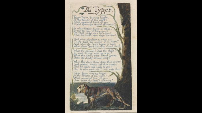 "William Blake, ""The Tyger,"" from Songs of Innocence and of Experience, plate 42, 1794, color-printed relief etching with watercolor on cream wove paper. Yale Center for British Art, Paul Mellon Collection."