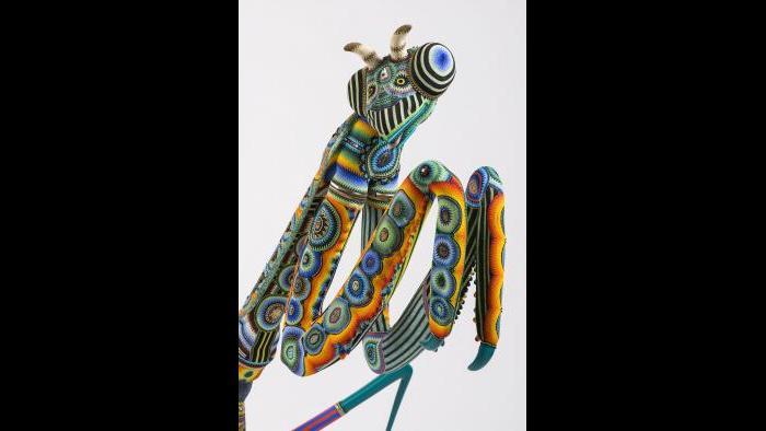 Jan Huling, 'Das Bug,' 2015. (Courtesy of SOFA Chicago)