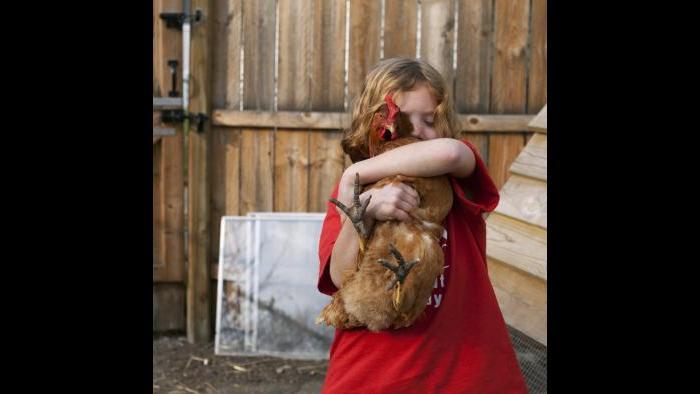 "Colleen Plumb, ""Holding Backyard Chicken,"" photograph, 2012."