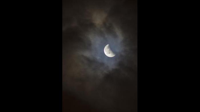 Photo by Estuardo Gamarro: Taken from Brighton Park towards the end of the eclipse.