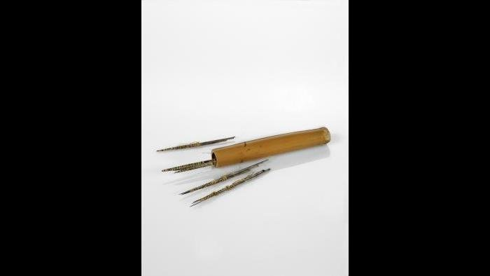 Argentine tattooing tools made of cactus needles. (Courtesy of The Field Museum)