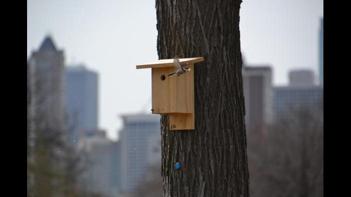 A wildlife camera trap.
