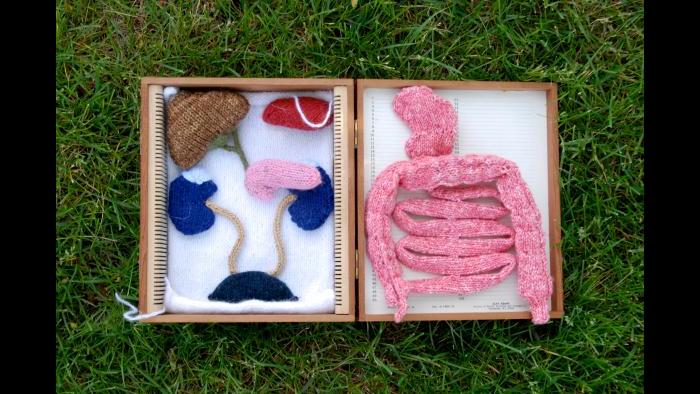 Knitted intra-abdominal organs (Courtesy of Daniel Lam)