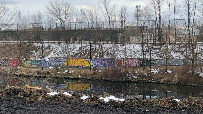 "With the east bank shorn of foliage, neighbors complain their view now includes ""eyesores"" like this wall of graffiti on the West Bank. Ald. Andre Vasquez said there may be an opportunity to create a mural or mosaic. (Patty Wetli / WTTW News)"