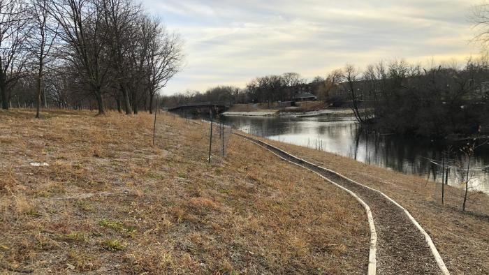 The restored riverbank in neighboring River Park offers a glimpse of what the bank of Legion Park will look like. (Patty Wetli / WTTW News)