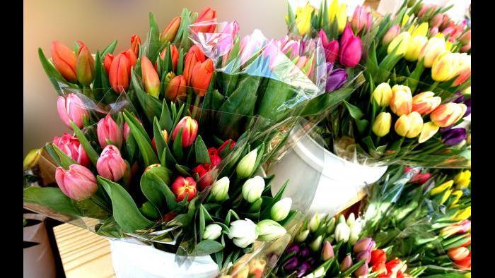 Flowers at Green City Market. (Photo by Cindy Kurman / Kurman Communications)