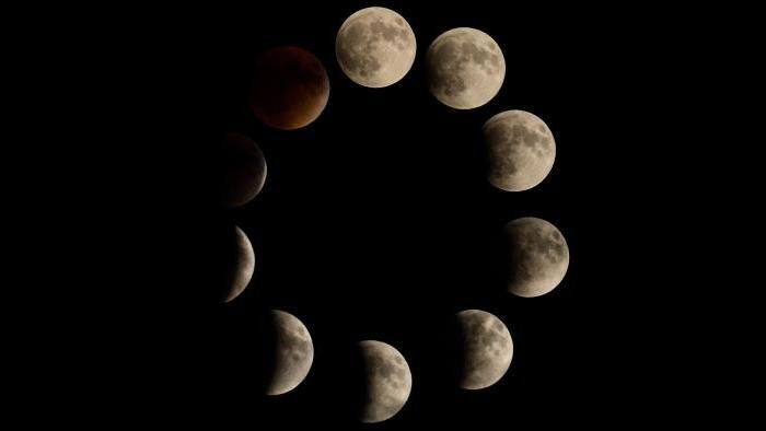 Photo by Meghan Young: Just the phases of the eclipse that I caught! Each photo is individual!