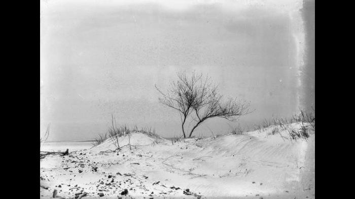 Indiana Dunes (Jun Fujita / Courtesy of Graham and Pamela Lee)