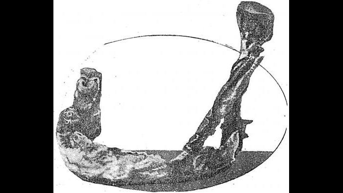 "The lower jawbone of Mollie Maggia, the first death among the New Jersey ""Radium Girls."" (American Weekly)"