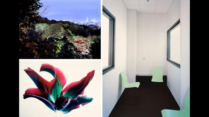 """Clockwise: Scott Fortino, Advocate's Interview Room, Domestic Court, 2007; Mary Koga, Tulips: RG #16, from the """"Floral & Leaves"""" Series, 1971; Christina Seely, Metropolis 35º00'N135º45'E (Kyoto), 2005-2009."""