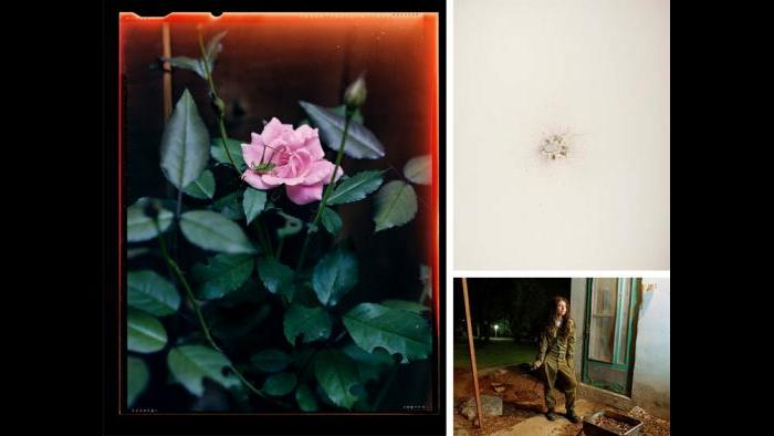 "Clockwise: Christian Patterson, Shotgun Blast, 2011; Rachel Papo, Dana, a sniper instructor, outside her room, Kibbutz Kfar Hanassi, Israel (#25) from the Serial No. 3817131 portfolio, 2004; Guillaume Simoneau, Grasshopper on rose, Kennesaw, Georgia, from the ""Love and War"" series, 2006."