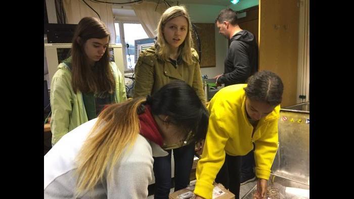 UIC students installing equipment aboard the Akademik loffe. (Miguel Gonzalez-Meler / UIC)