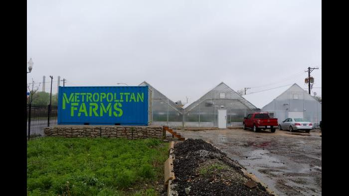 The greenhouse is located at 4250 W. Chicago Ave. in West Humboldt Park. (Evan Garcia)