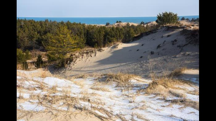 Indiana Dunes National Park (Courtesy of QT Luong)