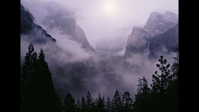 Yosemite National Park (Courtesy of QT Luong)