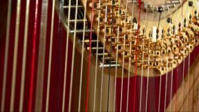 Harp-Making
