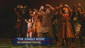 July 2, 2013 - Hedy Weiss: Theater Reviews