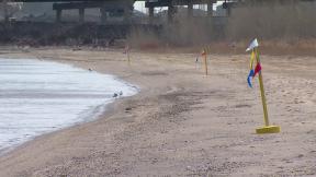 March 31, 2014 - Lake Michigan Oil Spill