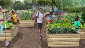 June 30, 2015 - Creating Green Space in Lawndale Triangle