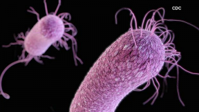 "April 28, 2015 - The Threat of ""Superbugs"""